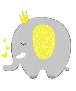 تم فیل کوچولو
